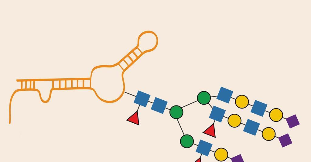 New class of biomolecule baffles scientists