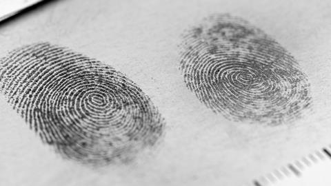 A Rice Kind Of Fingerprint Powder Opinion Chemistry World