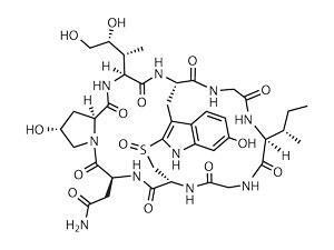 Amatoxin