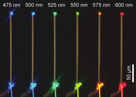 An image of six thin, yellow and white filaments arranged in parallel on a black background.  Each filament has a bright point of light of a different color above and below