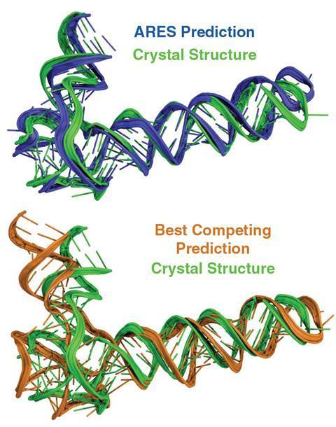 دو تصویر دیجیتالی از ساختارهای RNA مارپیچ