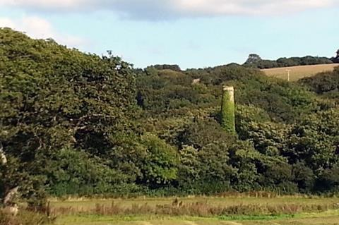 The overgrown South Terras mine, showing the chimney amongst trees