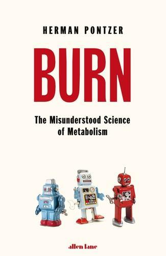 An image that represents the book cover of Burn.  shows