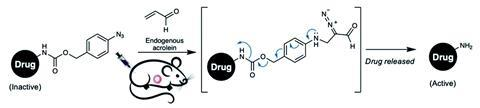 A picture showing the drug release strategy