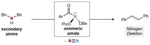 A scheme showing the nitrogen deletion reaction