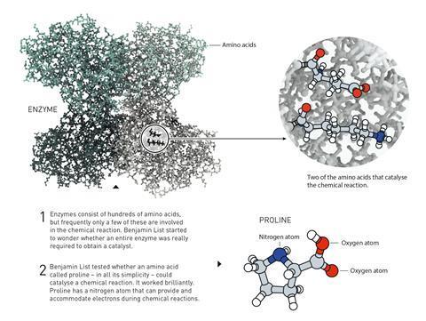 تصویری که توضیحات مربوط به پرولین را نشان می دهد