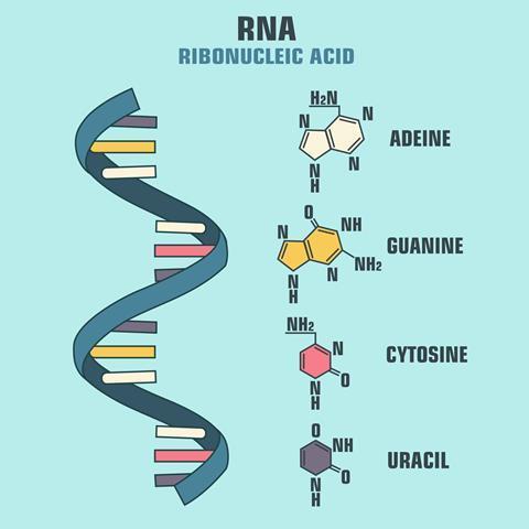 RNA | Podcast | Chemistry World