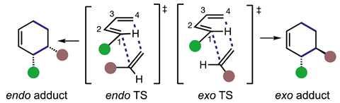 An image showing endo/exo transition structures (TSs) and products in Diels–Alder (DA) reactions