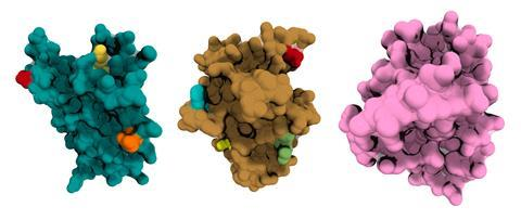 An image showing Bright Peak protein structures
