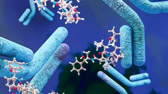 An illustration showing antibody-drug conjugates